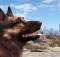 Fallout 4 Dogmeat Companion